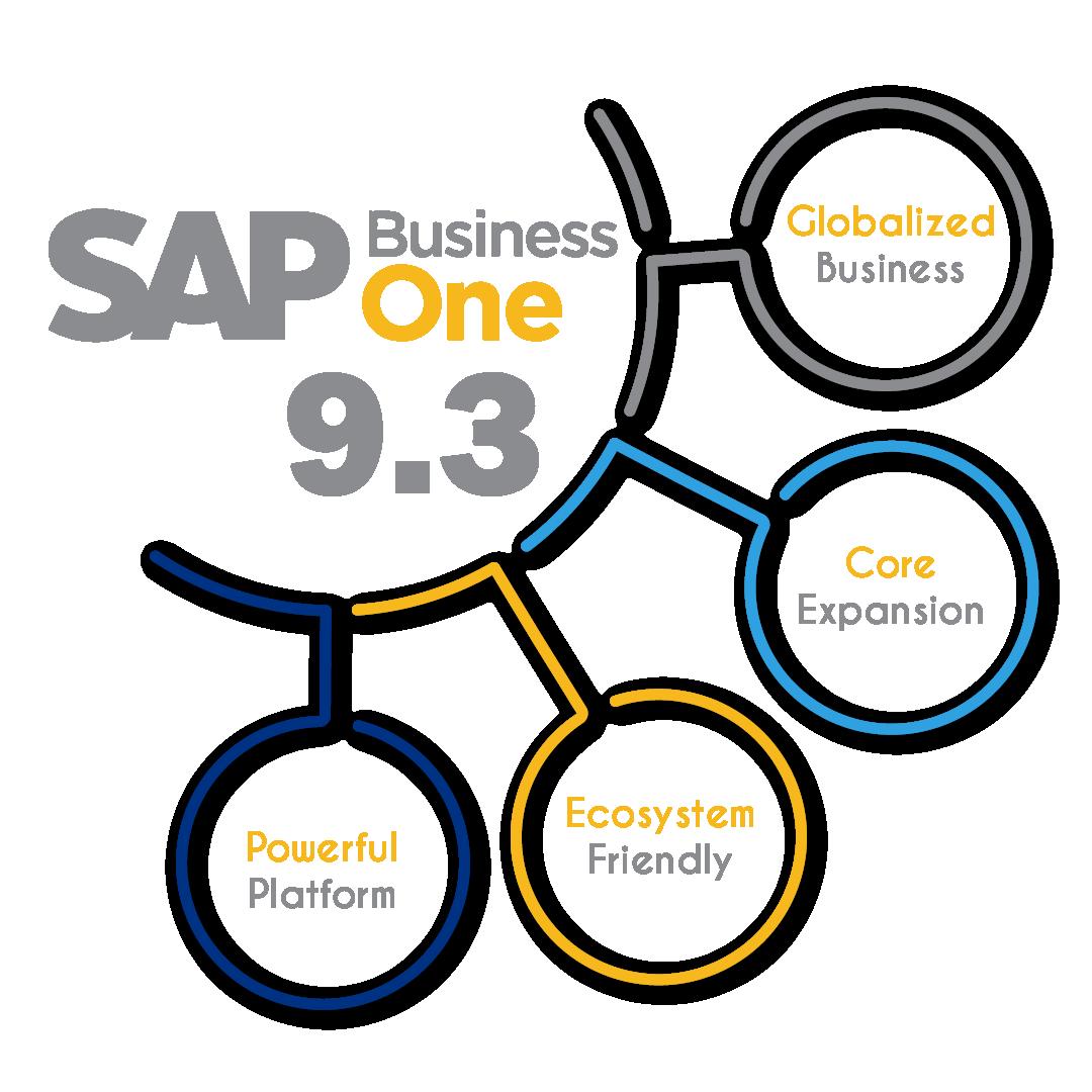 SAP 9.3 Image-01